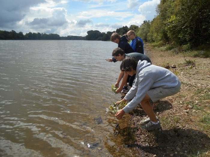 Le long de la Loire scolaire classe découverte