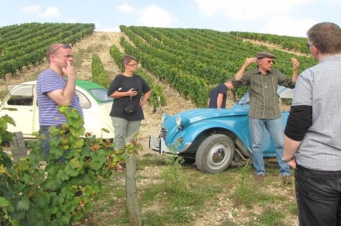 Visite des vignes, Au Coeur du Vin, Bourgogne Franche-Comté, Chichée, Yonne