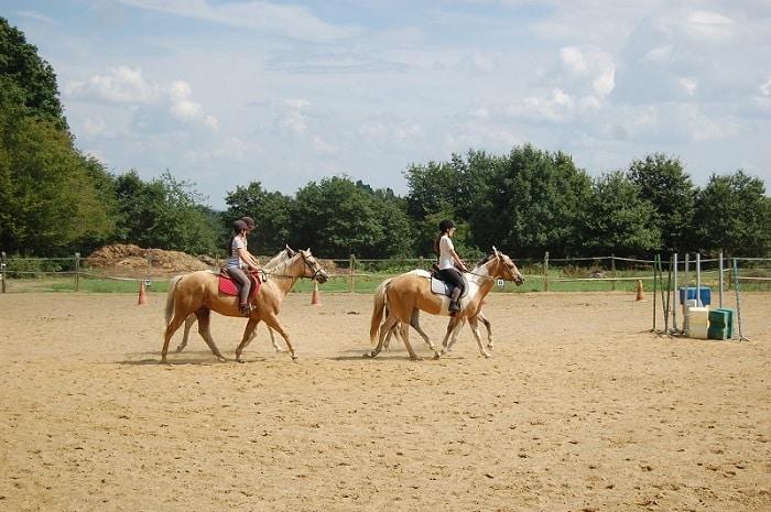 Balade à cheval, centre équestre de Toucy, Bourgogne Franche-Comté, Toucy, Yonne