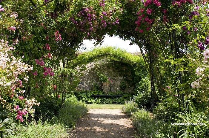 Jardin remarquable du Château de la Bussière dans la Loiret