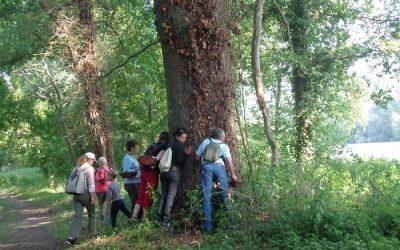 Activités nature et découverte