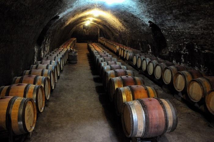 Domaine Borgnat à Escolives Sainte Camille en Bourgogne