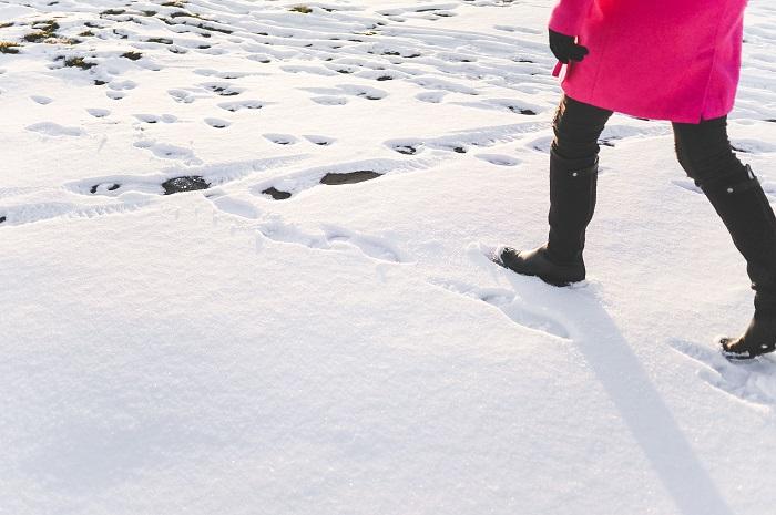 snow_bourgogne_buissonniere