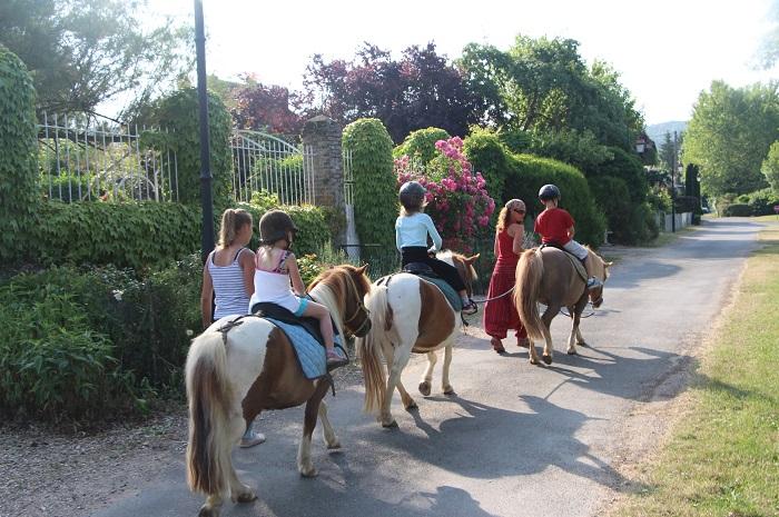 Poney Club pour les enfants vallee de l'yonne Armeau, Yonne Bourggne