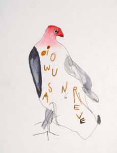 Exposition Des oiseaux en voyage – ZigZag Color @ Château de Ratilly