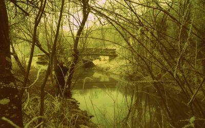 Le Sentier du Marais d'Andryes