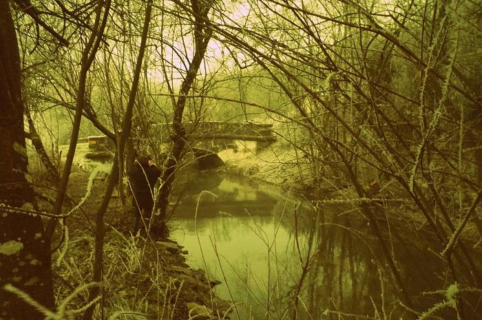Le sentier du Marais d'Andryes en Bourgogne